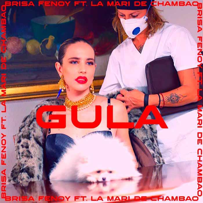Gula - Brisa Fenoy